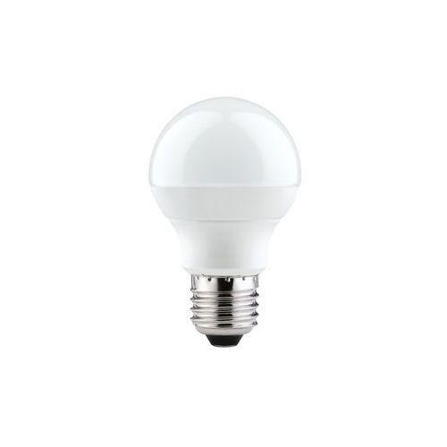 LED Globe 60 7W E27 230V 2700K z kategorii oświetlenie