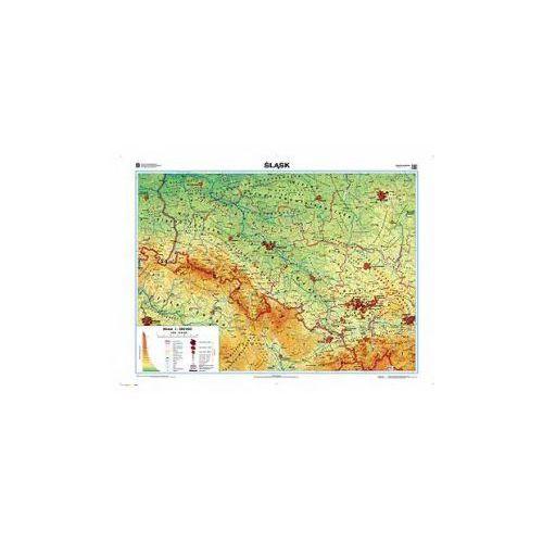 Produkt Śląsk. Mapa regionalna ogólnogeograficzna / krajobrazowa. Mapa ścienna Śląska, marki Nowa Era