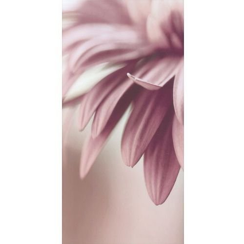 Sorenta Bianco Kwiaty inserto A 30x60 gat.I (glazura i terakota)