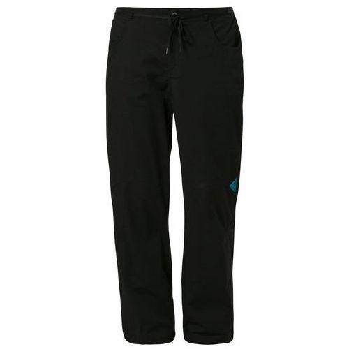 Produkt z kategorii- spodnie męskie - adidas Performance FELSBLOCK Spodnie materiałowe czarny