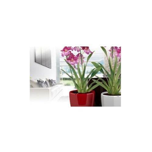 Produkt Donica Classic -  - HG3101, marki Arte Home
