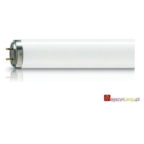 Oferta TL 100W/10-R SLV