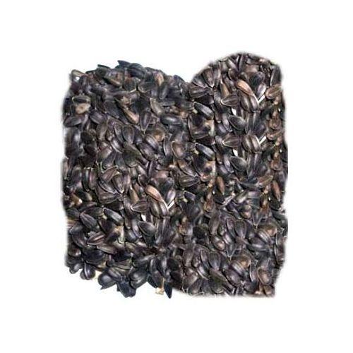 KAMELEON słonecznik czarny dla ptaków
