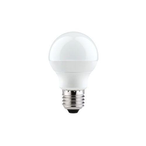 LED Globe 60 3,6W E27 230V 2700K z kategorii oświetlenie
