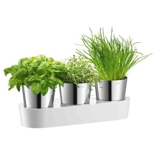 Zestaw donic na zioła Auerhahn Herbs, produkt marki Produkty marki Auerhahn