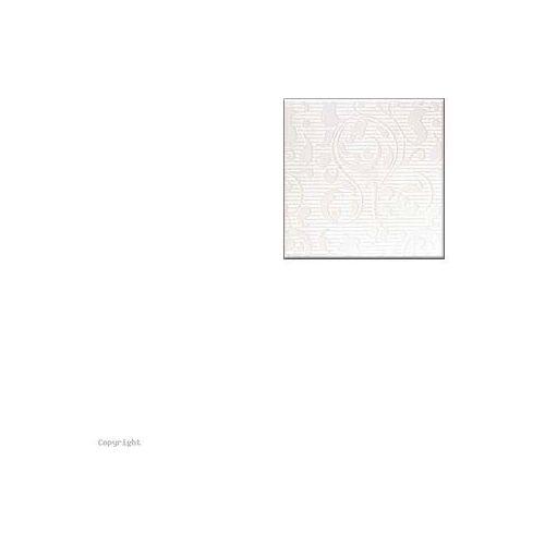APLAUZ BIAŁY ORNAMENT CENTRO 10x10 G.1 M (glazura i terakota)