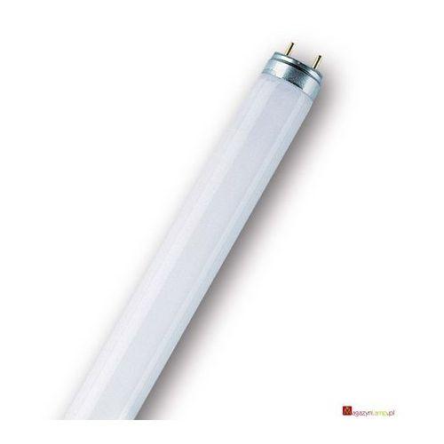 Oferta L 36/954-1 świetlówka liniowa T8 Osram