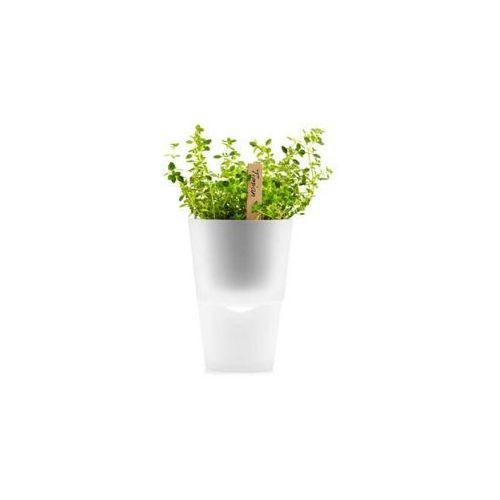 Produkt Doniczka na zioła  13 cm, szkło mrożone, marki Eva Solo